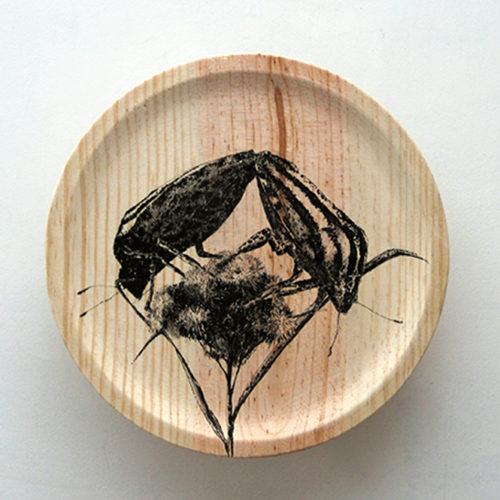 #INSECTA X#24cm ø # tinta sobre madera