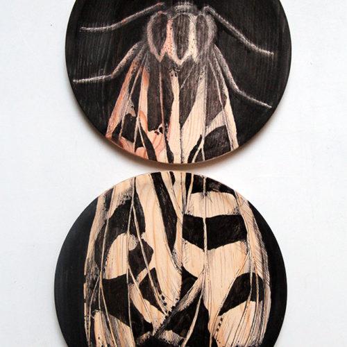 #INSECTA VII#PACK 2 UND: 22cm ø # tinta sobre madera